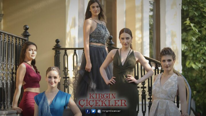Huérfanas novela turca