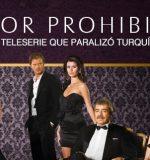 amor prohibido novela turca