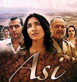 Asi-novela-turca
