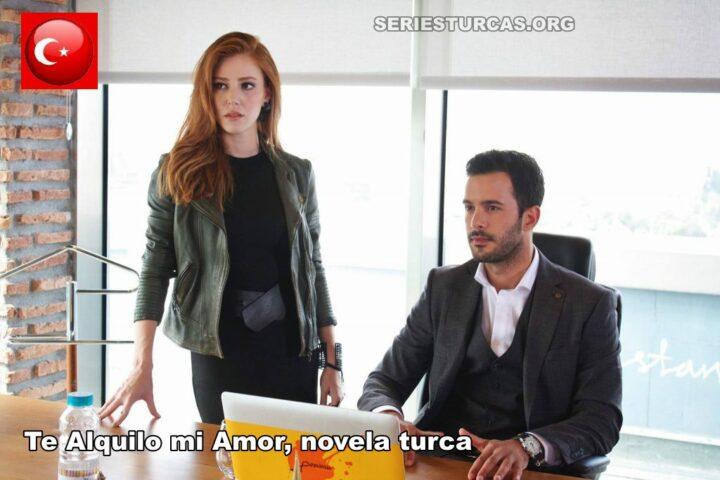 te alquilo mi amor capitulos en español